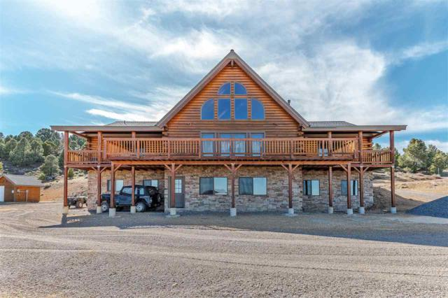 4820 Livery Rd., Reno, NV 89521 (MLS #190005466) :: Chase International Real Estate