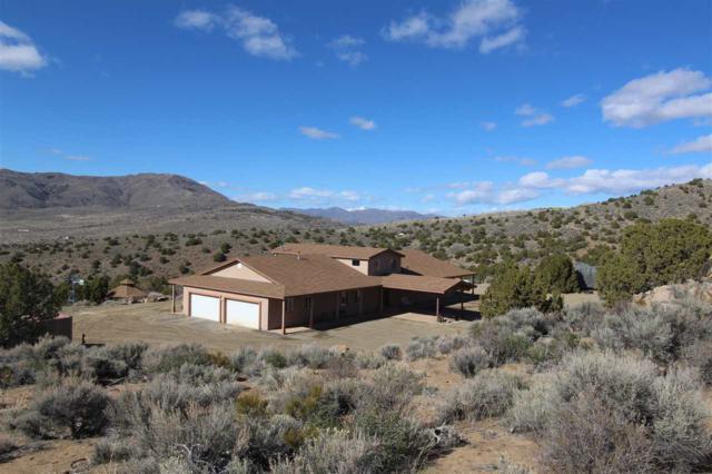 115 Boron Lane, Reno, NV 89508 (MLS #190005479) :: Northern Nevada Real Estate Group