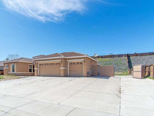 518 Crabapple Ln, Dayton, NV 89403 (MLS #190005525) :: Vaulet Group Real Estate