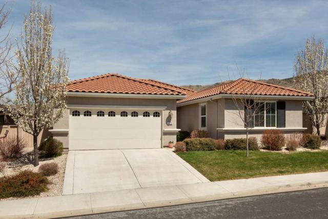 10730 Amber Falls Drive, Reno, NV 89521 (MLS #190005549) :: Vaulet Group Real Estate