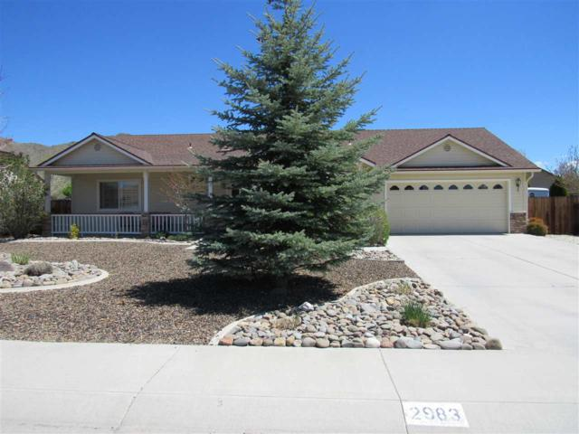 2983 San Mateo, Minden, NV 89423 (MLS #190005586) :: Vaulet Group Real Estate