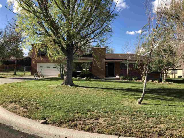 1695 Mckinley Drive, Reno, NV 89509 (MLS #190005607) :: The Mike Wood Team