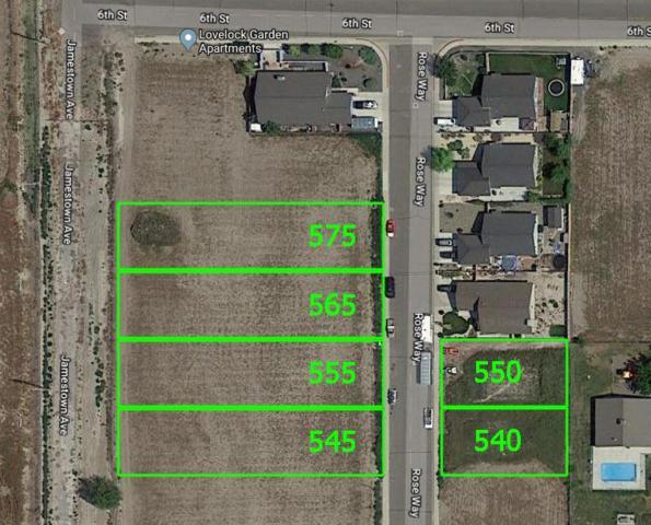 0 Rose Way, Lovelock, NV 89419 (MLS #190005628) :: NVGemme Real Estate
