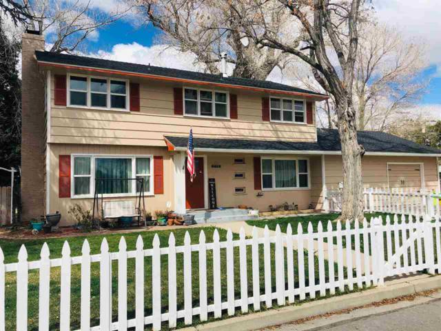 510 Mary St, Carson City, NV 89703 (MLS #190005739) :: NVGemme Real Estate