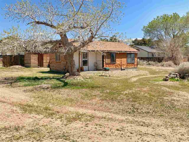 1673 Johnson Ln, Minden, NV 89423 (MLS #190005801) :: NVGemme Real Estate
