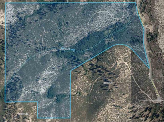 7805 Musgrove Creek, Washoe Valley, NV 89704 (MLS #190005808) :: Vaulet Group Real Estate