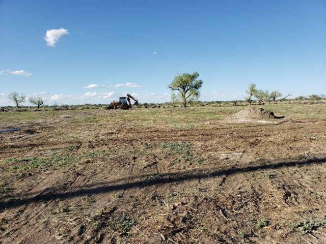 2838 Wagon Trail, Fallon, NV 89406 (MLS #190005961) :: Northern Nevada Real Estate Group