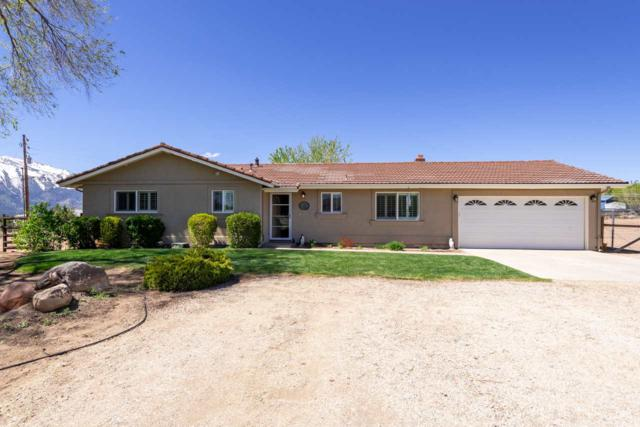 4035 Partridge, Washoe Valley, NV 89704 (MLS #190006080) :: Northern Nevada Real Estate Group