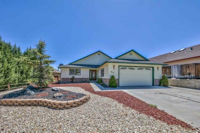 977 Ranchview, Carson City, NV 89705 (MLS #190006101) :: NVGemme Real Estate