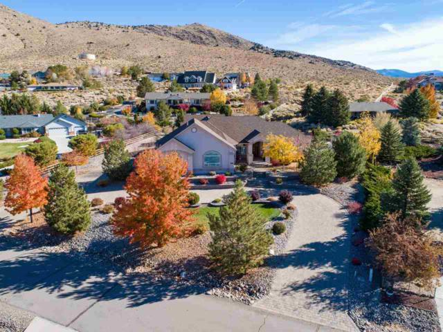 2957 San Miguel Ct, Minden, NV 89423 (MLS #190006116) :: NVGemme Real Estate