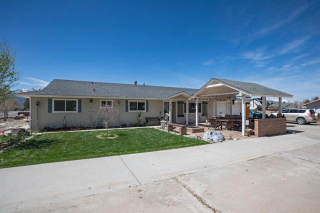 1358 Saratoga Street, Minden, NV 89423 (MLS #190006231) :: NVGemme Real Estate
