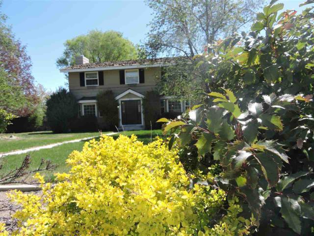 121 Plantation Dr, Carson City, NV 89703 (MLS #190006282) :: Northern Nevada Real Estate Group