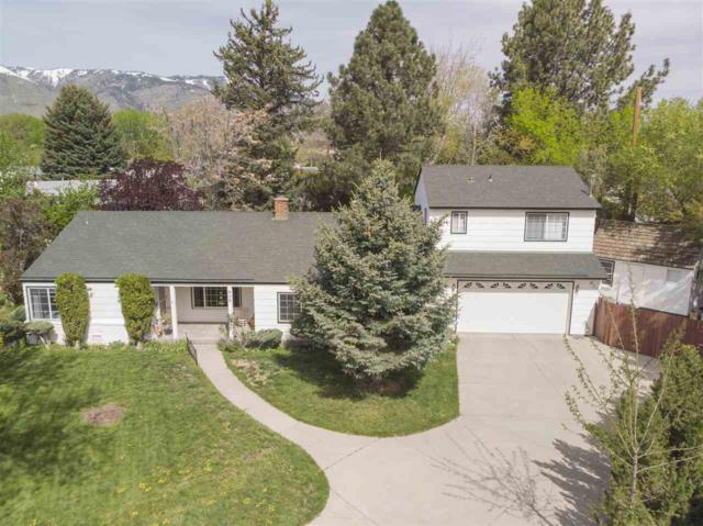 916 Angus Street, Carson City, NV 89703 (MLS #190006305) :: Vaulet Group Real Estate