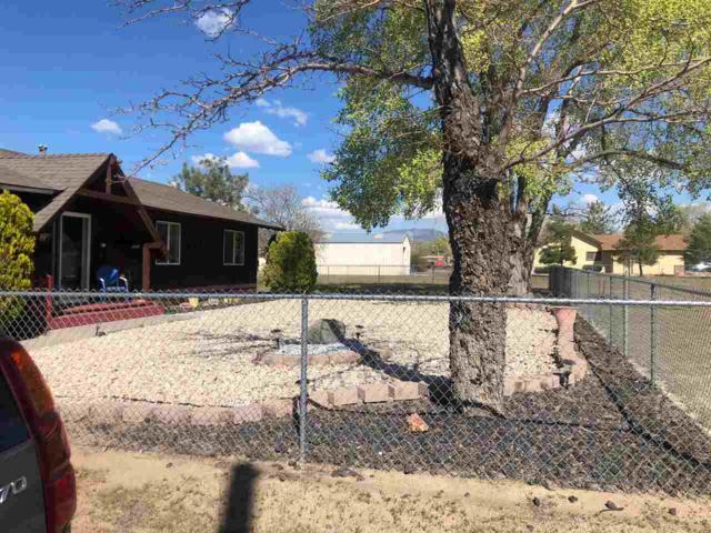 1356 Downs, Minden, NV 89423 (MLS #190006453) :: NVGemme Real Estate