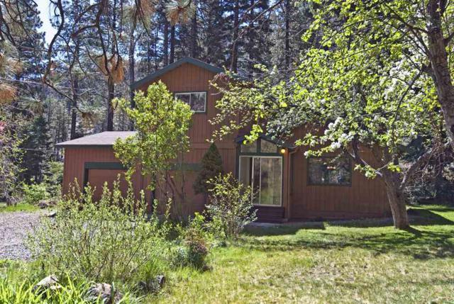 214 Crystal Springs Road, Woodfords, Ca, CA 96120 (MLS #190006491) :: Ferrari-Lund Real Estate