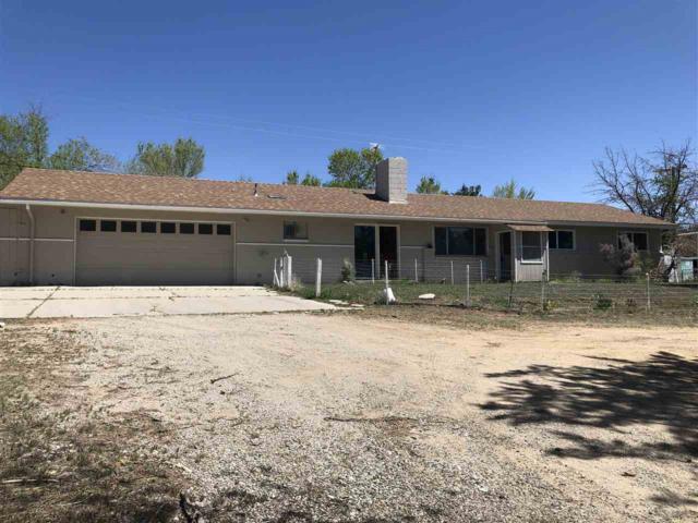 1390 Brenda Way, Washoe Valley, NV 89704 (MLS #190006549) :: Northern Nevada Real Estate Group
