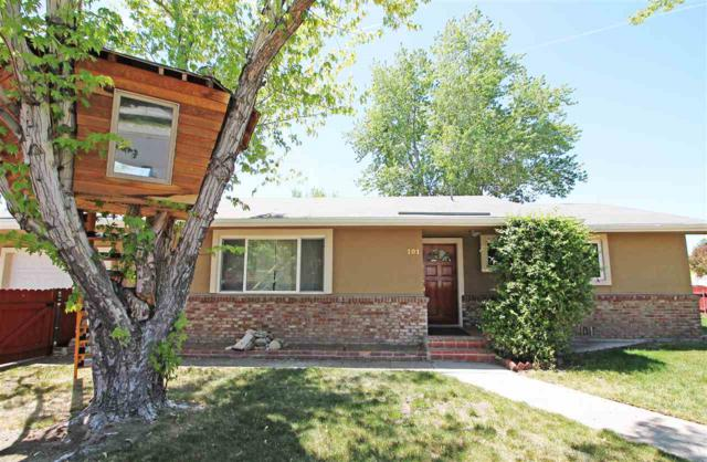101 Byington Dr., Reno, NV 89509 (MLS #190006737) :: The Mike Wood Team