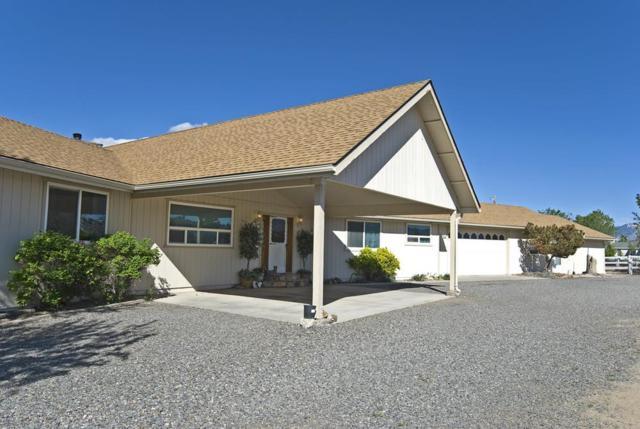 1719 Sunrise Pass Road, Minden, NV 89423 (MLS #190006776) :: NVGemme Real Estate
