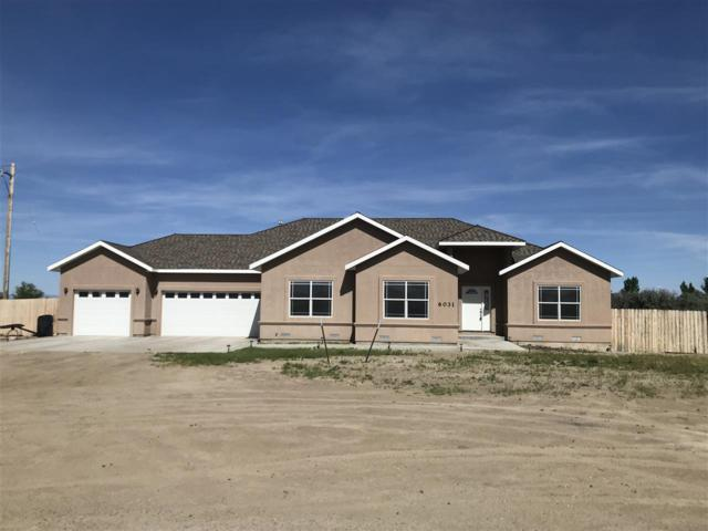 6031 Cow Canyon Drive, Fallon, NV 89406 (MLS #190006792) :: The Mike Wood Team