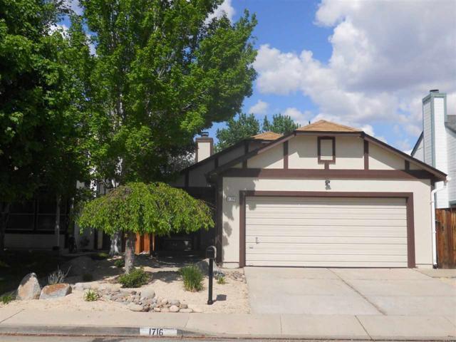1716 Noreen Dr, Sparks, NV 89519 (MLS #190006811) :: NVGemme Real Estate