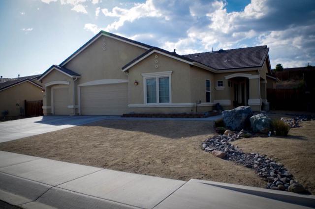 1378 Grassland Road, Dayton, NV 89403 (MLS #190006845) :: NVGemme Real Estate