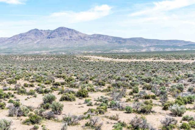 61 W Sierra View Drive, Smith, NV 89430 (MLS #190006869) :: Vaulet Group Real Estate
