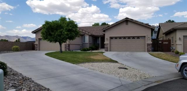 286 Cruden Bay Dr., Dayton, NV 89403 (MLS #190006939) :: NVGemme Real Estate