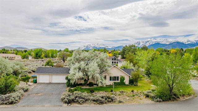 1650 Star Way, Reno, NV 89511 (MLS #190006945) :: NVGemme Real Estate