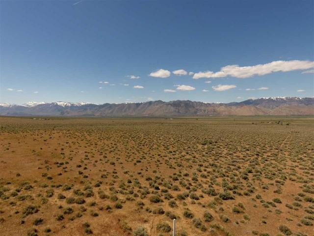 00 Eastside Ln, Topaz, NV 89410 (MLS #190006957) :: Harcourts NV1