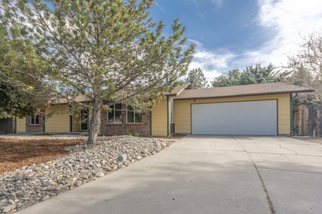 1445 High Chaparral, Reno, NV 89521 (MLS #190006978) :: Northern Nevada Real Estate Group