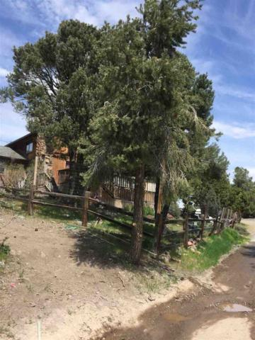 2354 Cartwright Rd., Virginia City, NV 89440 (MLS #190006982) :: Vaulet Group Real Estate