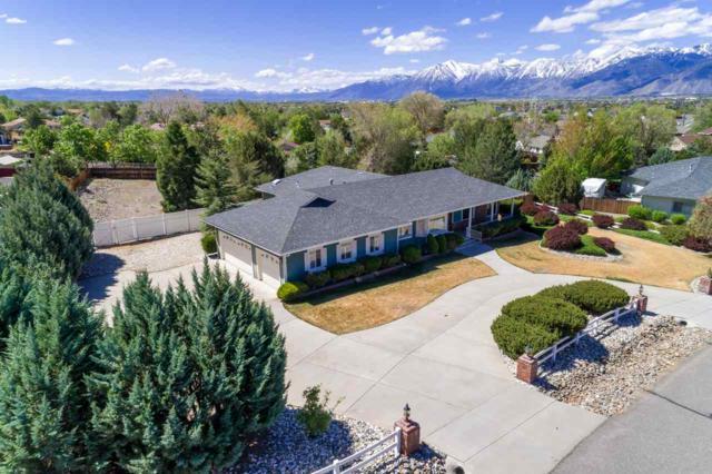 1317 Santa Cruz, Minden, NV 89423 (MLS #190006998) :: NVGemme Real Estate
