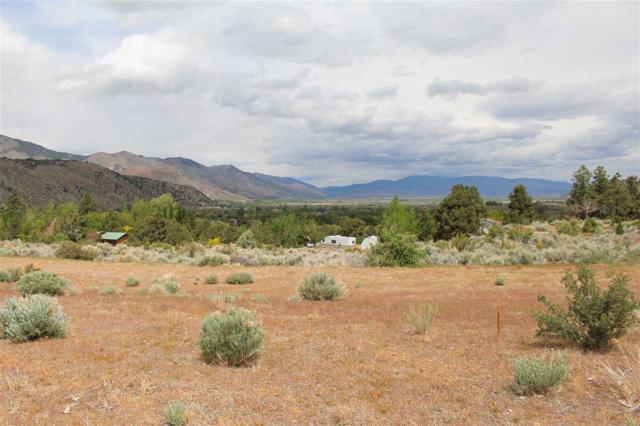 214 Dry Canyon Road, Coleville, Ca, CA 96107 (MLS #190007008) :: Chase International Real Estate