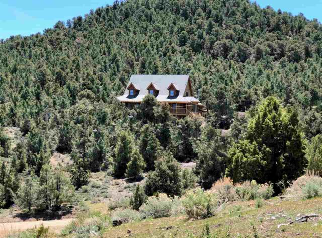 21305 Highland Rd, Reno, NV 89521 (MLS #190007032) :: Vaulet Group Real Estate