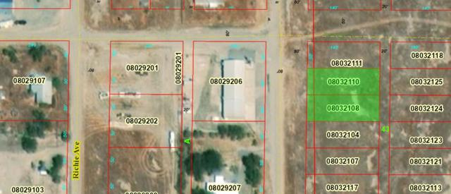 00 S Guernsey Ave, Golconda, NV 89414 (MLS #190007036) :: The Mike Wood Team