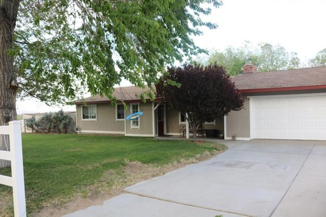 3689 Shawnee, Carson City, NV 89705 (MLS #190007037) :: NVGemme Real Estate