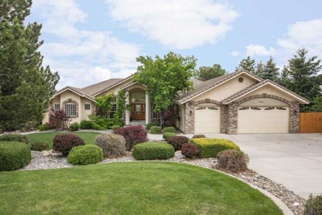 12650 Fieldcreek Ln, Reno, NV 89511 (MLS #190007052) :: Chase International Real Estate