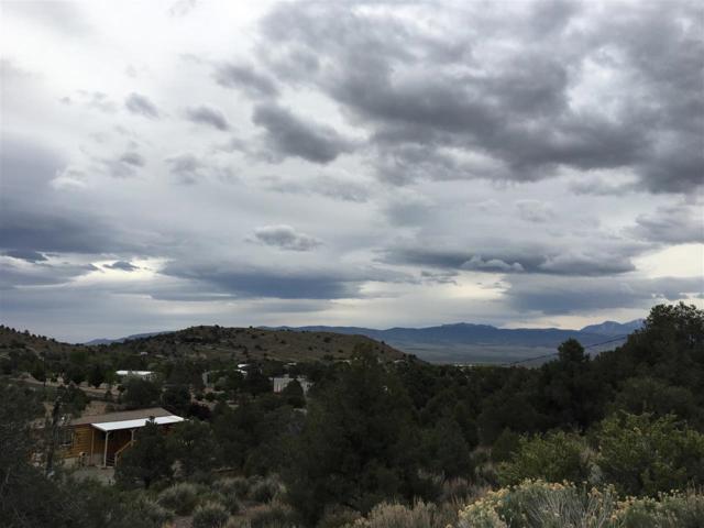 1420 Sandstone Drive, Wellington, NV 89444 (MLS #190007053) :: Northern Nevada Real Estate Group