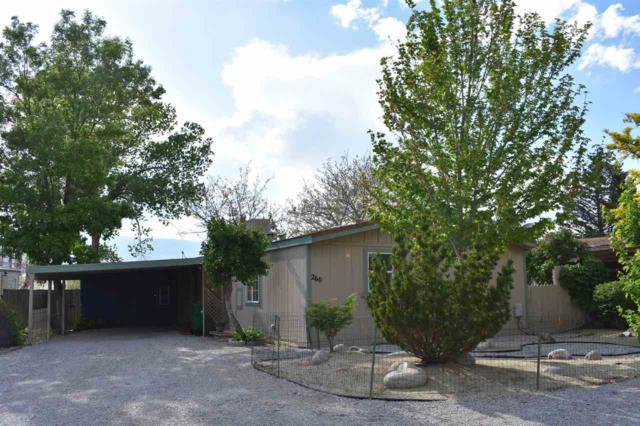 260 Zircon Dr, Reno, NV 89521 (MLS #190007085) :: Northern Nevada Real Estate Group