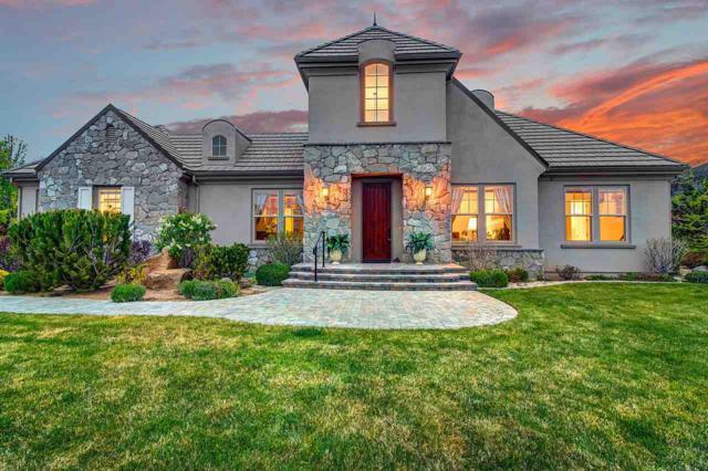 16800 Delacroix Ct, Reno, NV 89511 (MLS #190007098) :: Vaulet Group Real Estate