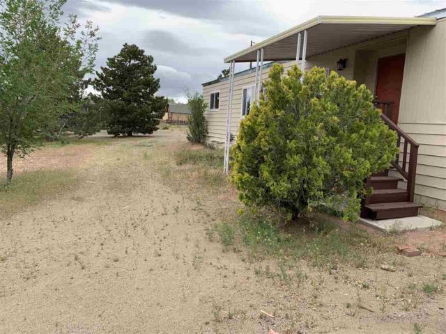 115 Guildwood Drive, Sun Valley, NV 89433 (MLS #190007105) :: Vaulet Group Real Estate
