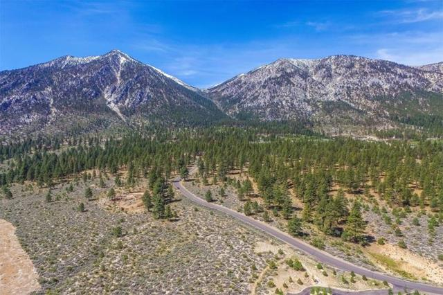 80 Five Creek Road, Gardnerville, NV 89460 (MLS #190007106) :: NVGemme Real Estate