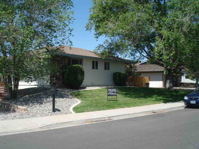 3595 Buckhorn, Reno, NV 89503 (MLS #190007129) :: NVGemme Real Estate