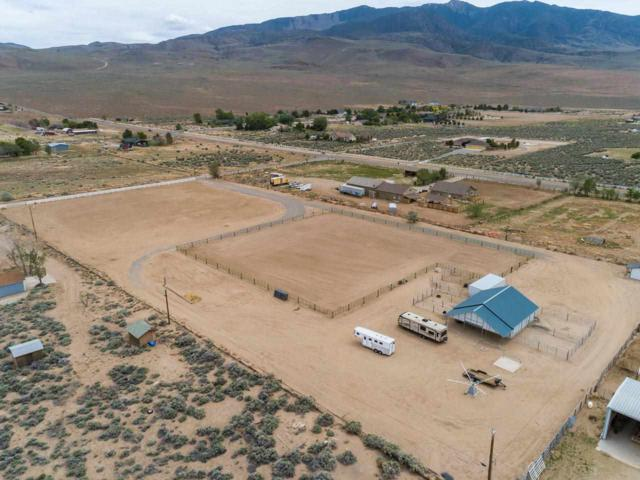 110 Potosi Rd, Dayton, NV 89403 (MLS #190007142) :: Vaulet Group Real Estate