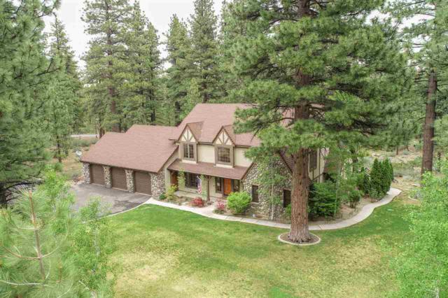 17160 Snow Berry Drive, Reno, NV 89511 (MLS #190007206) :: Vaulet Group Real Estate