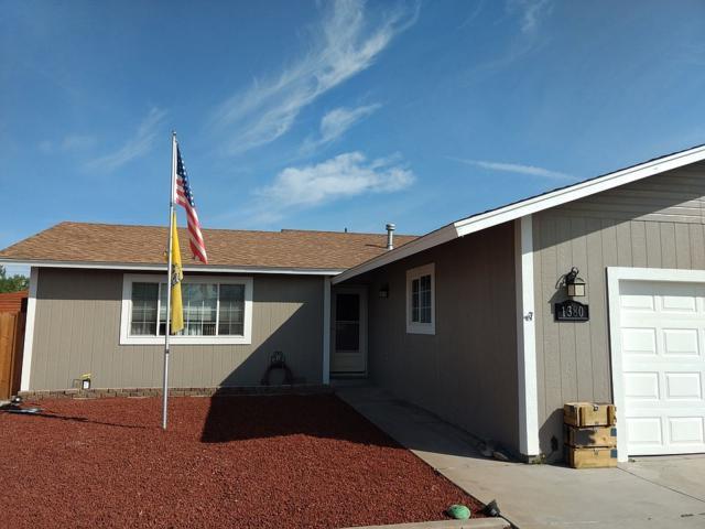 1380 Lattin Road, Fallon, NV 89406 (MLS #190007258) :: Vaulet Group Real Estate