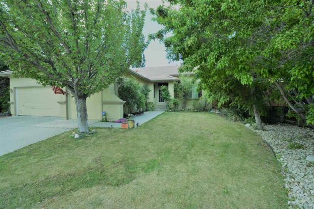 8720 Rainbow Trout Ct, Reno, NV 89523 (MLS #190007285) :: Northern Nevada Real Estate Group