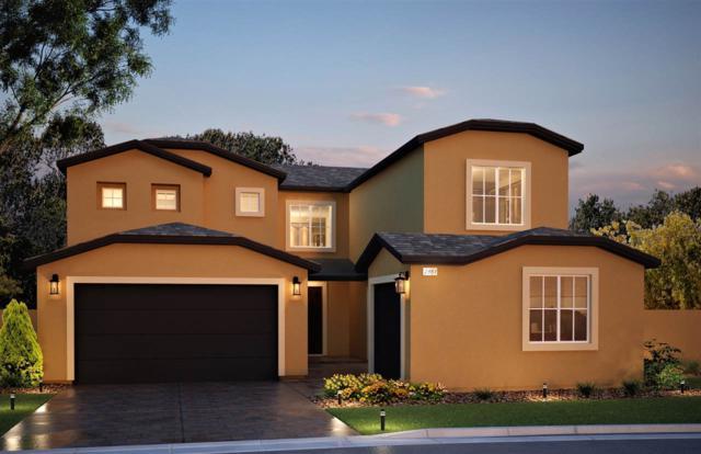 219 Balcorta Dr, Verdi, NV 89439 (MLS #190007298) :: NVGemme Real Estate
