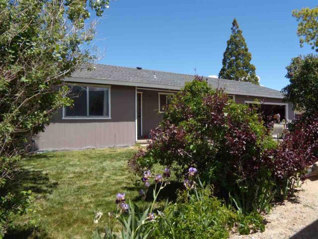 1396 Jobs Peak, Gardnerville, NV 89460 (MLS #190007300) :: NVGemme Real Estate