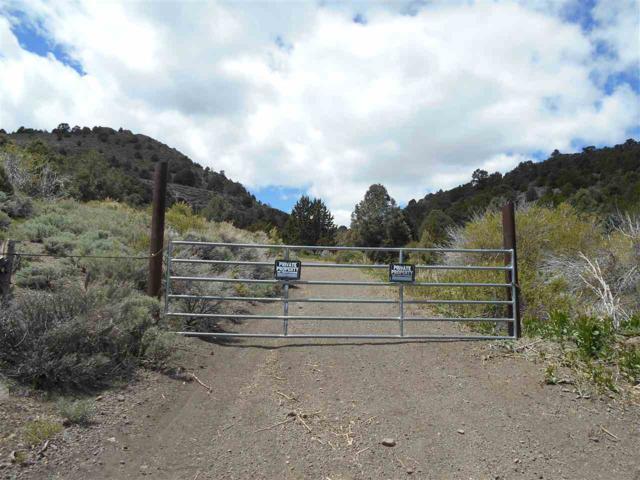 4730 Lost Burro Road, Reno, NV 89521 (MLS #190007312) :: Vaulet Group Real Estate